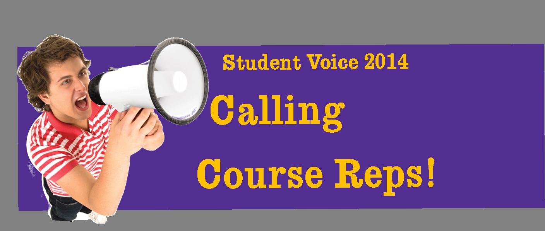 Cross-College Student Voice